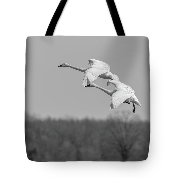 Tote Bag featuring the photograph Setting Down 20176-1 by Thomas Young