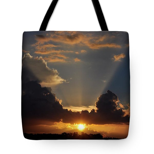 Tote Bag featuring the photograph Setting Softly by Jan Amiss Photography