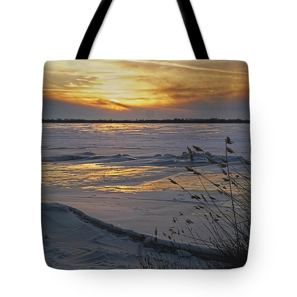 Tote Bag featuring the photograph Setting Sun by Judy Johnson
