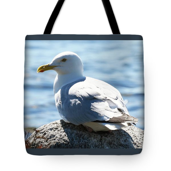 Tote Bag featuring the photograph Settled In by Sally Sperry