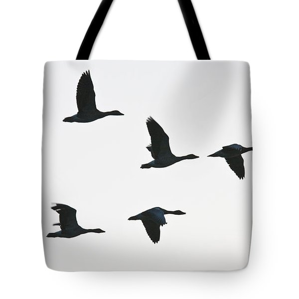 Sevenfold Geese Tote Bag