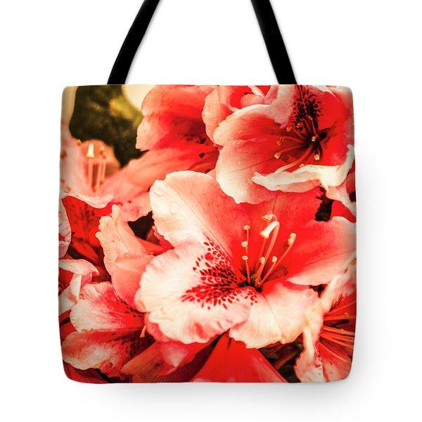 Shabby Chic Romances Tote Bag