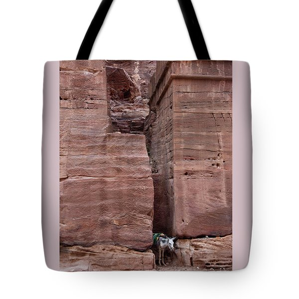 Tote Bag featuring the photograph Shade Is Good by Mae Wertz