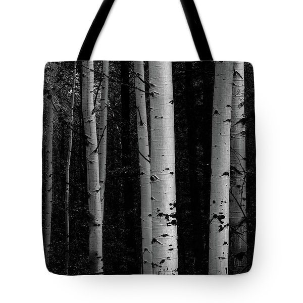 Tote Bag featuring the photograph Shades Of A Forest by James BO Insogna