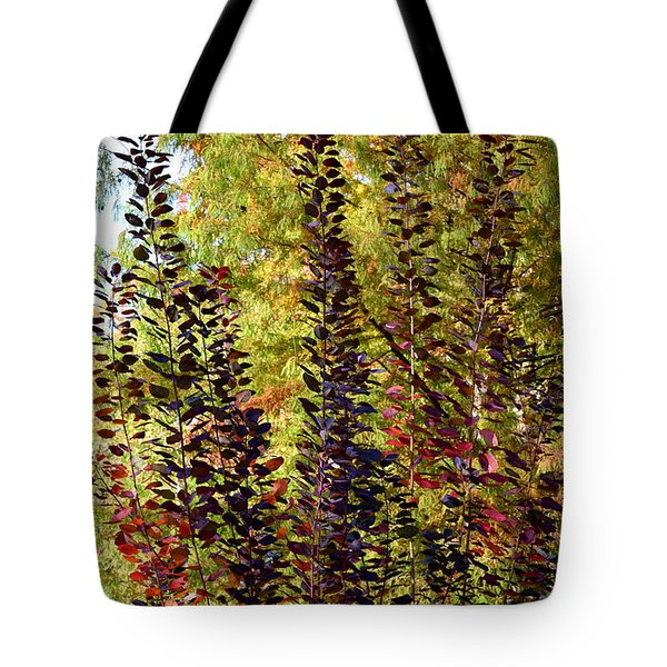 Tote Bag featuring the photograph Shades Of Fall by Deborah  Crew-Johnson