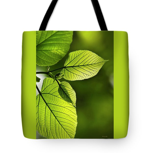 Shades Of Green Tote Bag by Christina Rollo