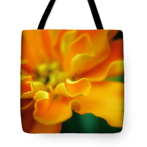 Tote Bag featuring the photograph Shades Of Orange by Eduard Moldoveanu