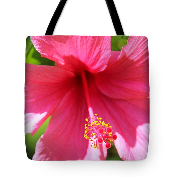 Shades Of Pink - Hibiscus Tote Bag