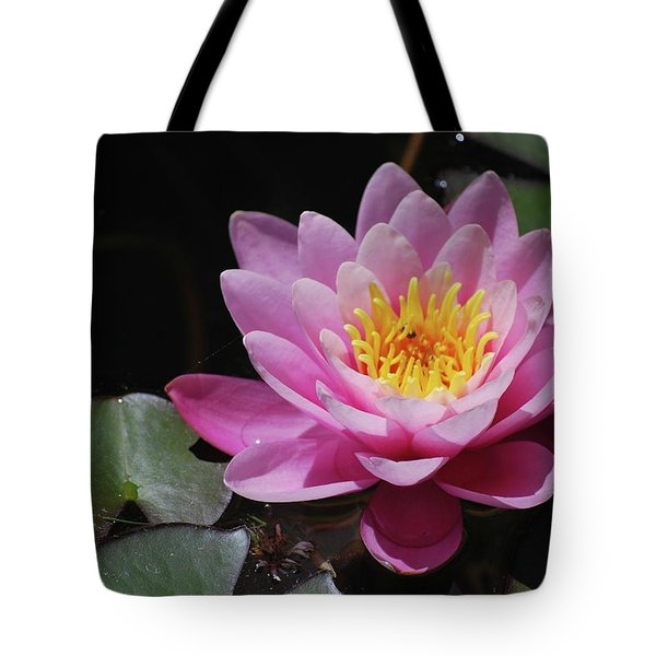 Tote Bag featuring the photograph Shades Of Pink by Amee Cave