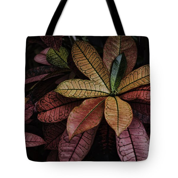Tote Bag featuring the photograph Shades Of Red by Judy Wolinsky