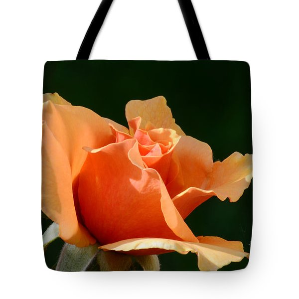 Shades Of The Sun Tote Bag