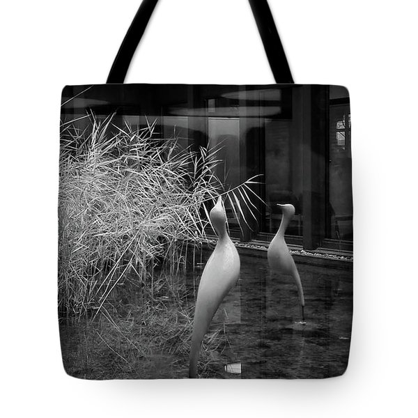 Shadow And Light 13 - Reflections - A Tote Bag