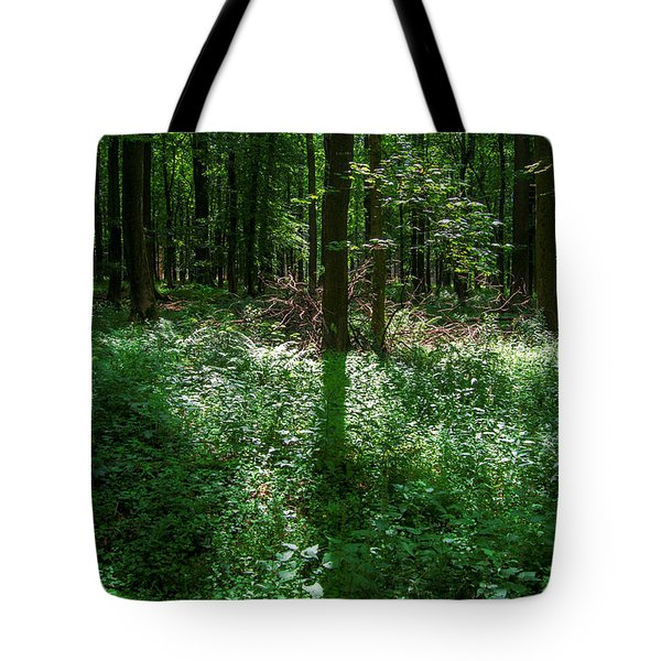 Shadow And Light In A Forest Tote Bag