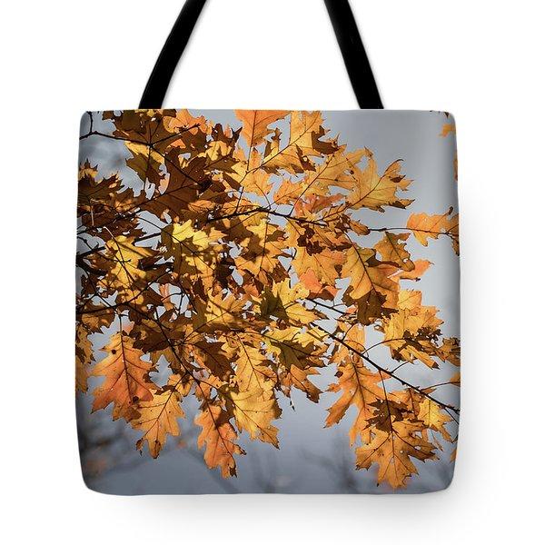 Shadow And Light - Tote Bag