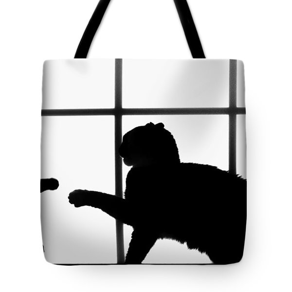 Shadow Boxing Tote Bag by Karen Slagle