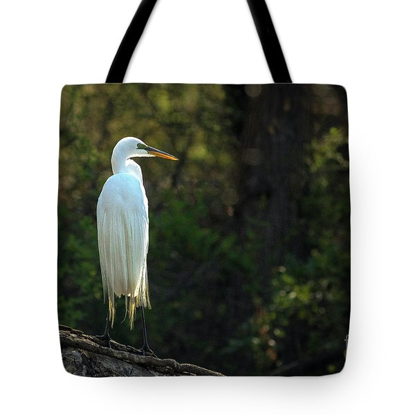 Shadow Heron Tote Bag