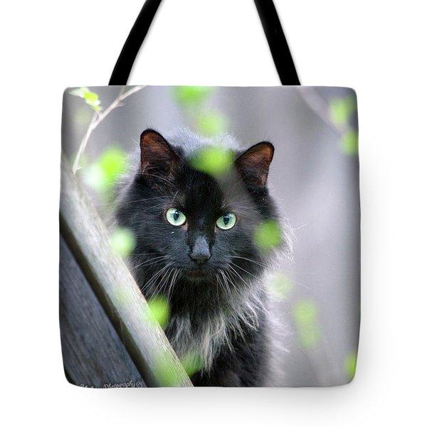Shadow Predator Tote Bag