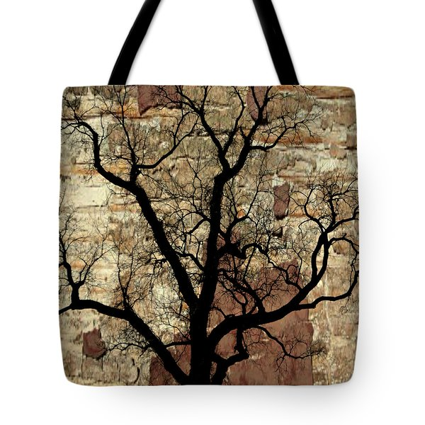 Shadow Wall Tote Bag by Marty Koch