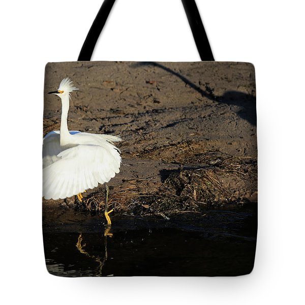 Shadows Are Scary   Tote Bag