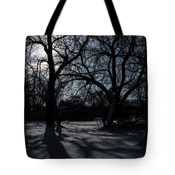 Shadows In January Snow Tote Bag