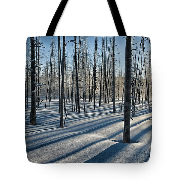 Shadows Of The Forest Tote Bag