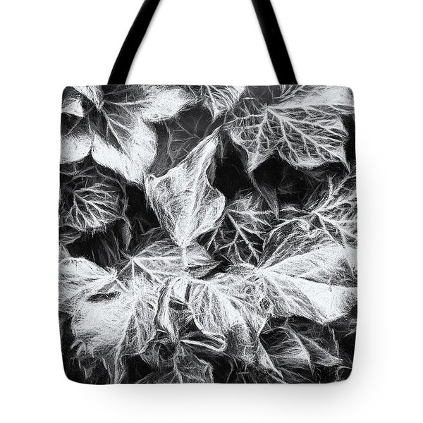Shadows Of The Ivy 2 Tote Bag
