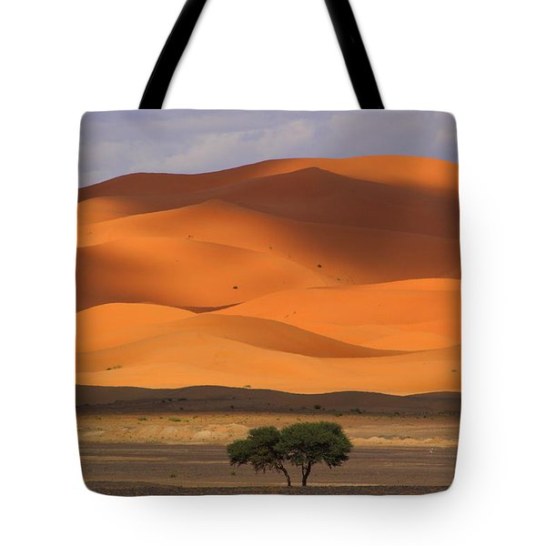 Tote Bag featuring the photograph Shadows On The Dunes by Ramona Johnston