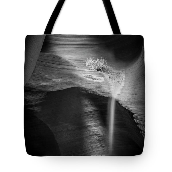Shadows Secluded Tote Bag by Jon Glaser