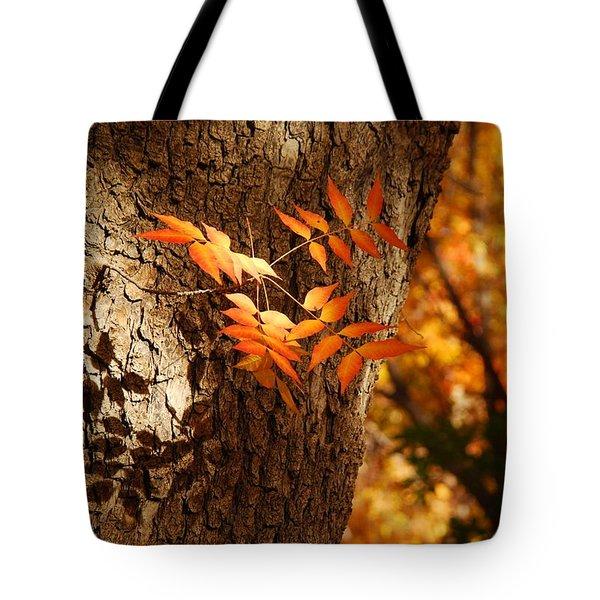 Fall Color Tote Bag