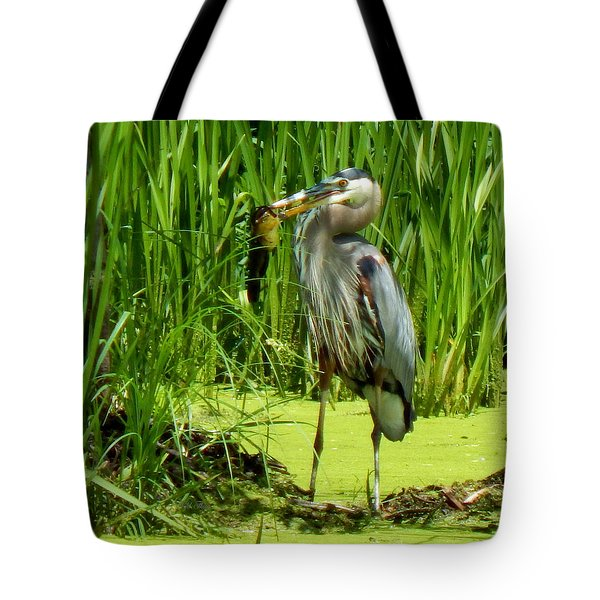Shady Lunchtime Tote Bag