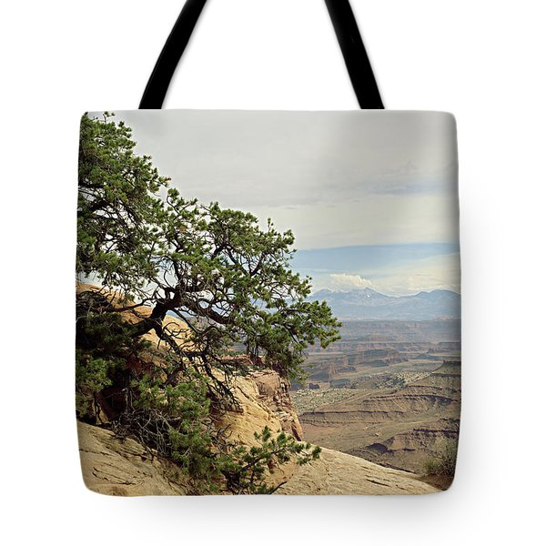 Shafer Canyon Overlook Tote Bag