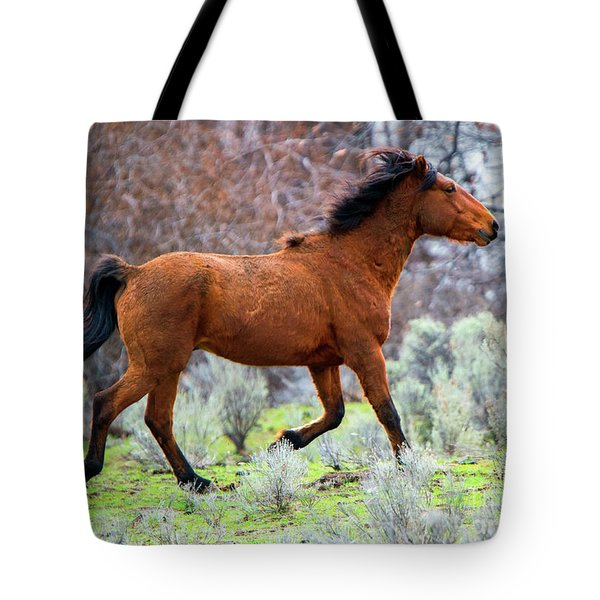 Tote Bag featuring the photograph Shaggy And Proud by Mike Dawson