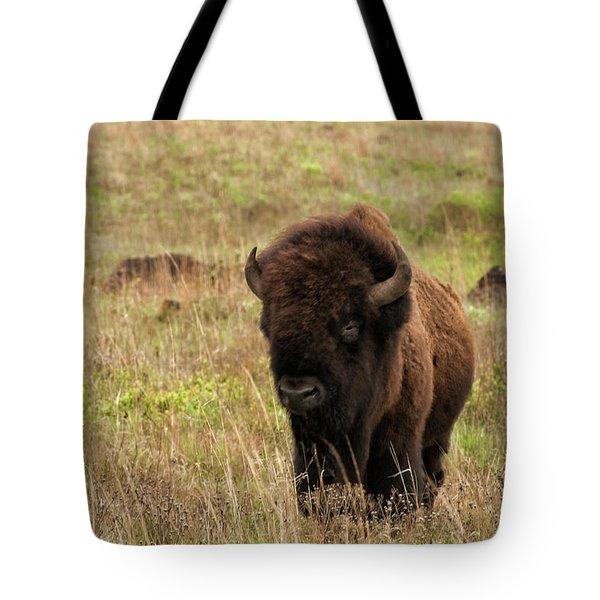 Shaggy Beast Tote Bag