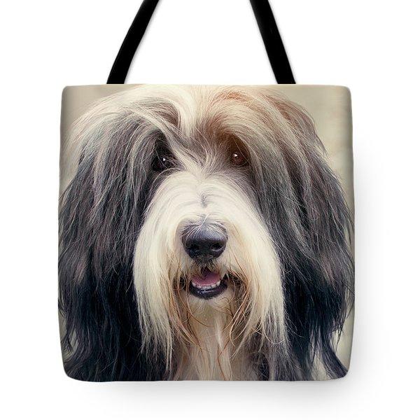 Shaggy Dog Tote Bag