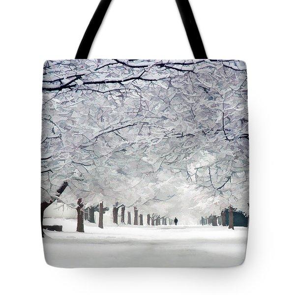 Shaker Winter Walkway Tote Bag