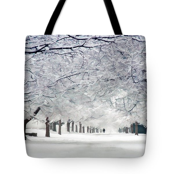 Shaker Winter Walkway Tote Bag