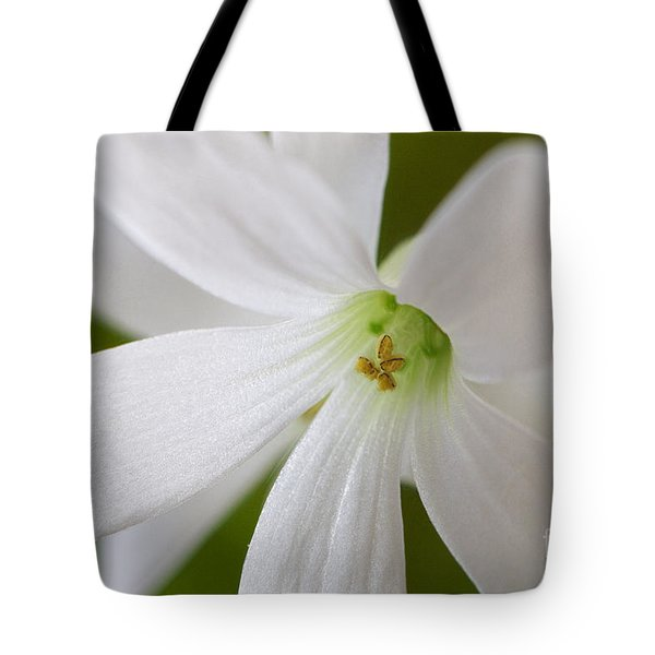 Shamrock Blossom Tote Bag by Sharon Talson