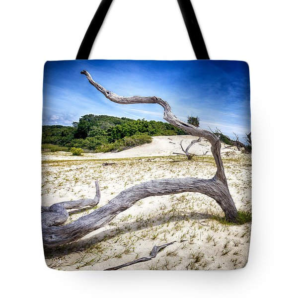 Shape Shifter Tote Bag by Alan Raasch