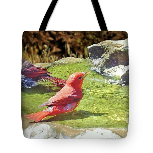 Sharing A Bath Tote Bag