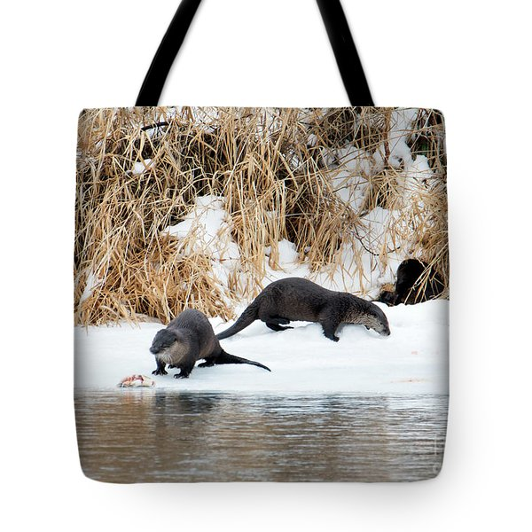 Sharing A Meal Tote Bag