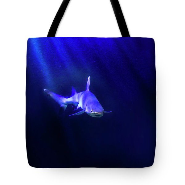 Shark Tote Bag by Jill Battaglia