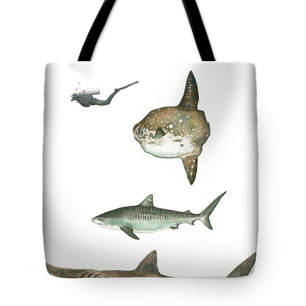 Sharks And Mola Mola Tote Bag