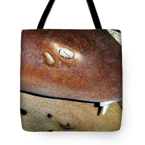 Tote Bag featuring the photograph Sharks by Anthony Jones