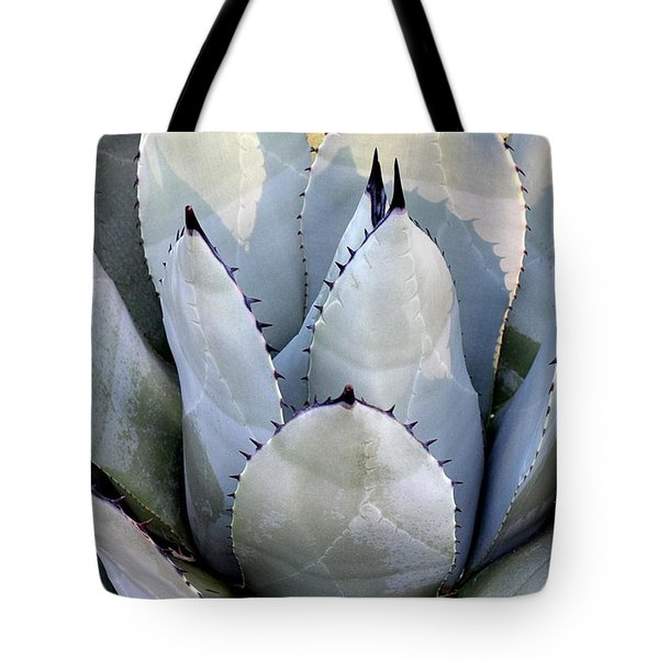 Tote Bag featuring the photograph Sharp by Deborah  Crew-Johnson