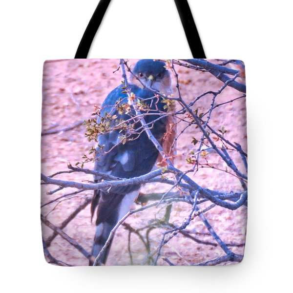 Sharp-shinned Hawk Hunting In The Desert 2 Tote Bag