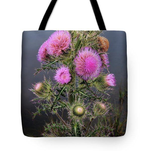 Sharp Thistle Tote Bag