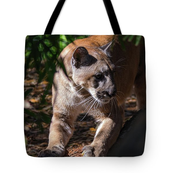 Sharpening Claws Tote Bag