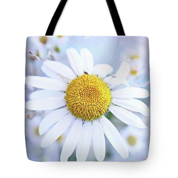 Shasta Daisy Tote Bag by Stephanie Frey