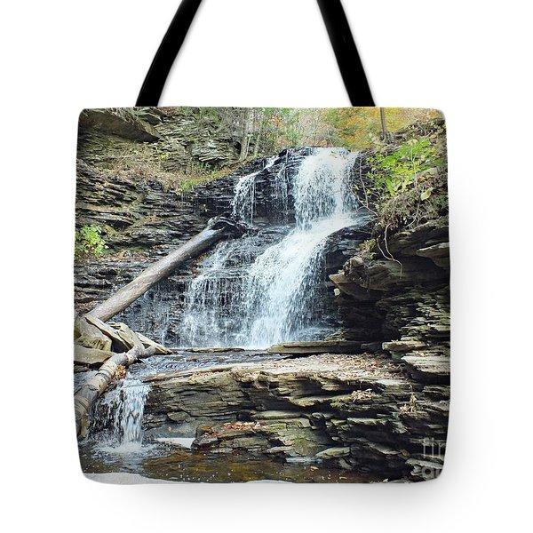 Shawnee 2 - Ricketts Glen Tote Bag