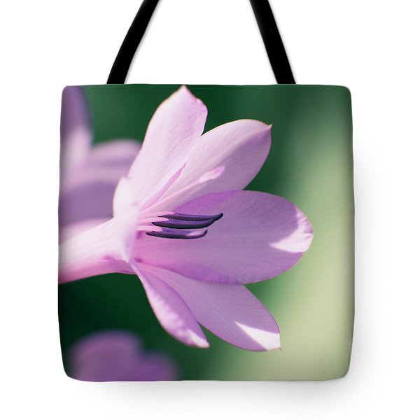 Tote Bag featuring the photograph She Listens Like Spring by Linda Lees